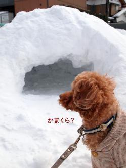 穴、発見!
