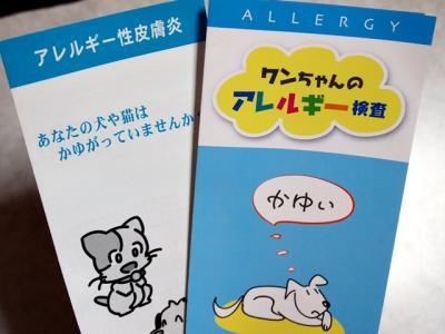 アレルギー検査 パンフレット