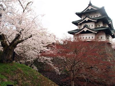 弘前城 天守閣