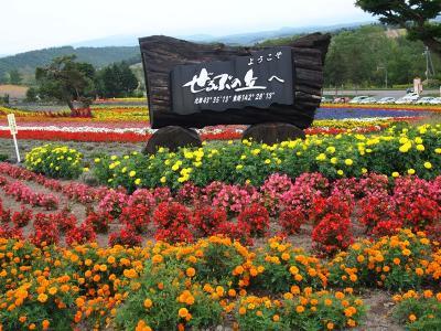ぜるぶの丘 お花いっぱい!