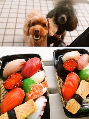 お寿司 おいしいー♪