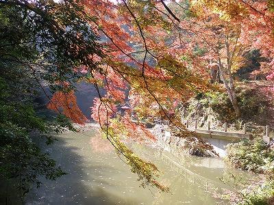 11月28日子松寺
