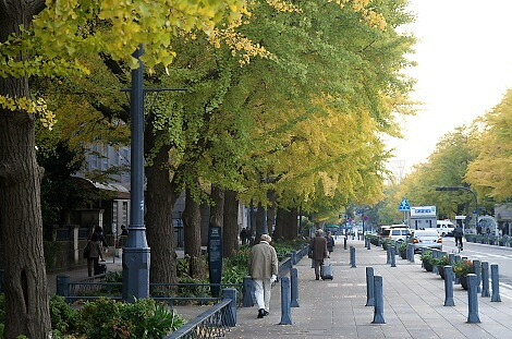 晩秋の横浜201209