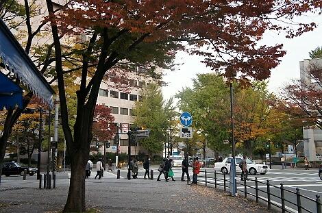 晩秋の横浜201210