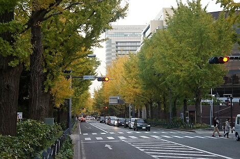 晩秋の横浜201213
