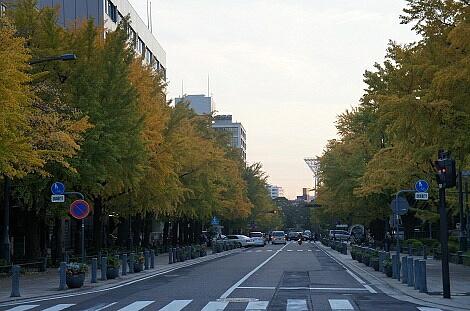 晩秋の横浜201217