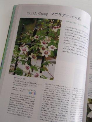 趣味の園芸クレマチス.jpg