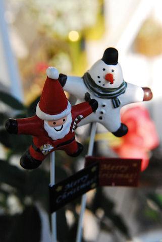 クリスマスピック20091210.jpg