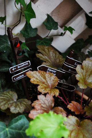 ヒューケラ寄せ植え20100212.jpg
