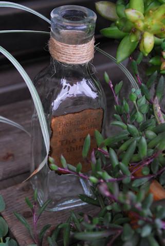 ガラス瓶20100626_02.jpg