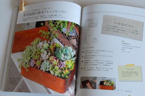 多肉植物アレンジBOOK20100906_03.jpg