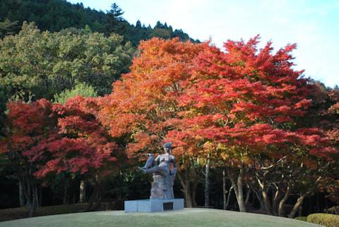 昭和の森会館20101120_03.jpg