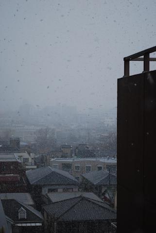 ベランダ東側2010211.jpg