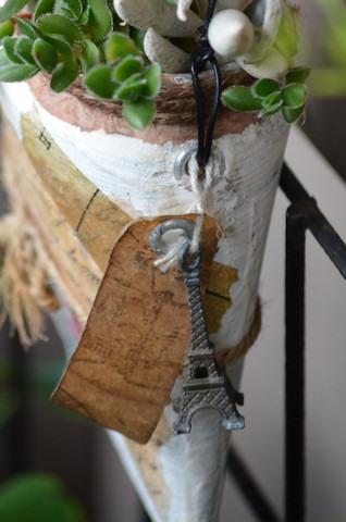 空き缶バケツの多肉寄せ植え20110909_02.jpg
