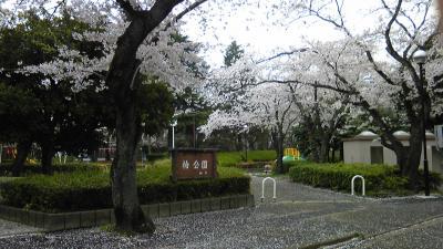 20130331a.jpg