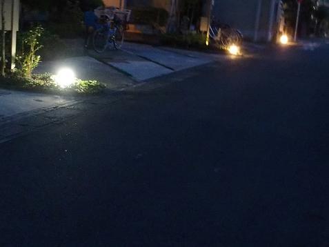街灯が下に有りましゅ