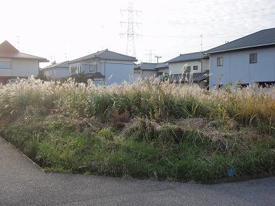 蔵波台草刈前