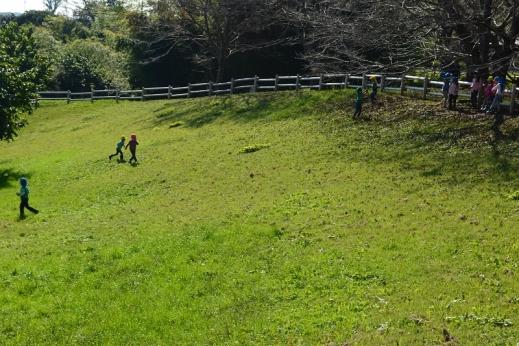 小山田緑地・とんぼ池付近