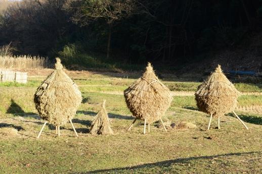 奈良ばい谷戸の風景