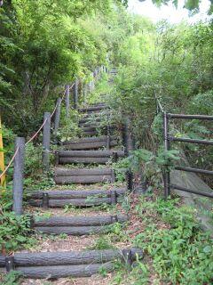 矢ヶ崎城址への階段