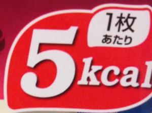 ダイエットケアカロリー