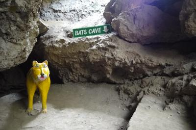 cave2_convert_20110424023538.jpg