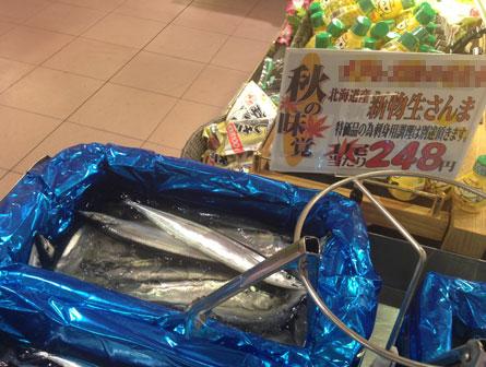 生秋刀魚248_130908