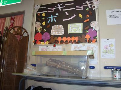 東京都 足立区 介護老人保健施設(入所・短期入所・通所リハビリ) 千寿の郷 居酒屋 きのこ 鍋