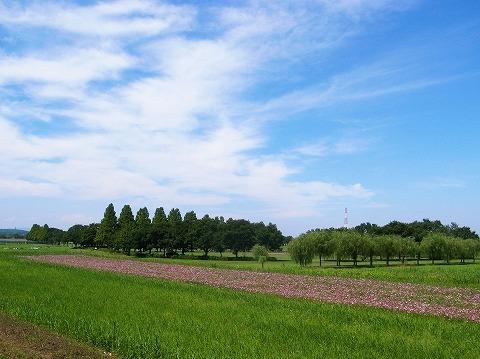2012-09-05 川越スナップ 029