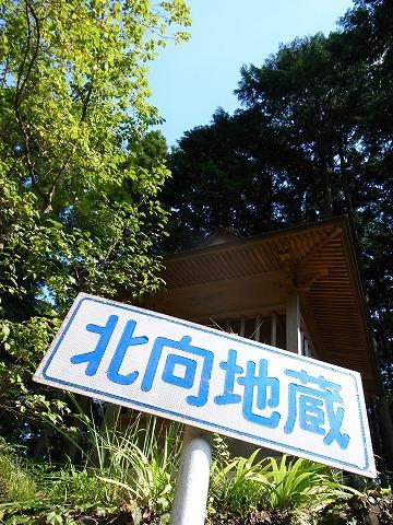 2012-09-13 林道権現堂線 011