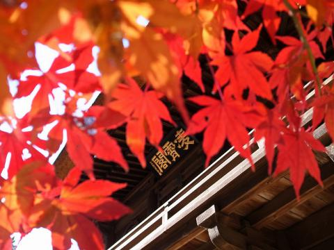 2012-12-05 平林寺 045