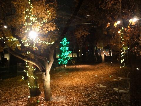 2012-12-17 マーケットテラス 009