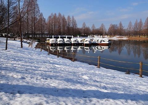 2013-01-16 川越スナップ 雪 009