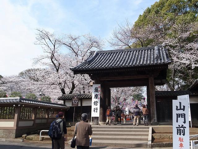 2013-03-28 小江戸川越ハイキング 056