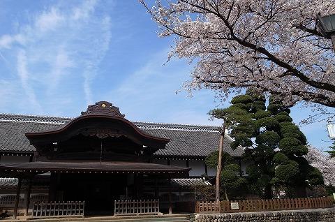 2013-03-28 小江戸川越ハイキング 098