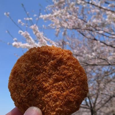 2013-04-04 入間川ランチ 018