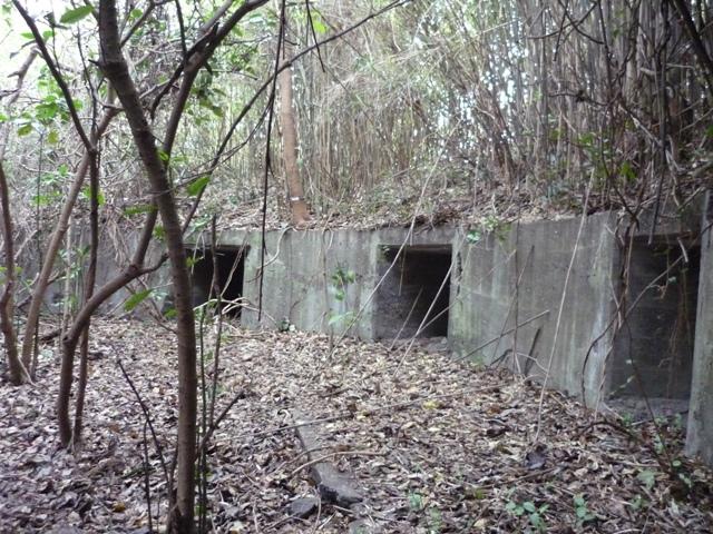 猿島高角砲台(2)