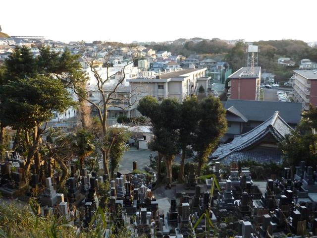 下に見えるのが浄林寺