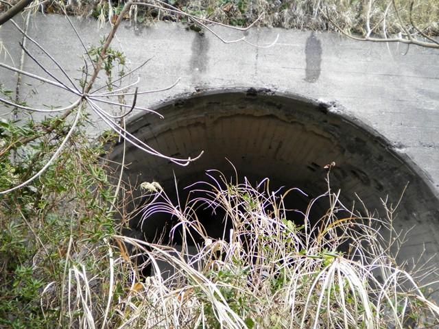 浜諸磯洞窟砲台