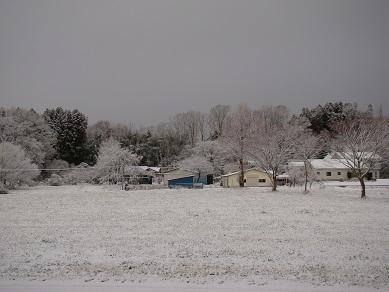 事務所前冬