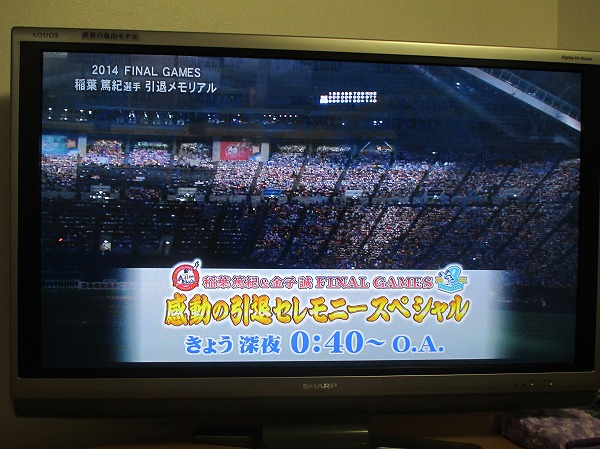 2014-10-5-ハチ-026