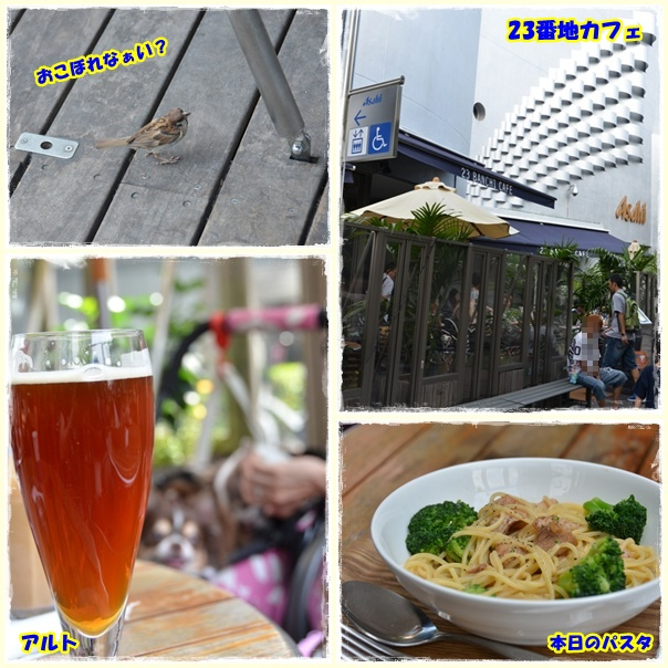 page_20110921195834.jpg