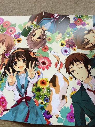 haruhi_hyakka_pin5.jpg