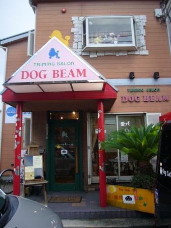 DOG BEAMさん