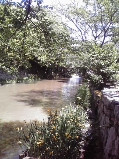 八幡堀水景
