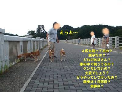 1_20100908013250.jpg