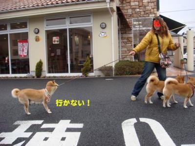 2_20100415223049.jpg