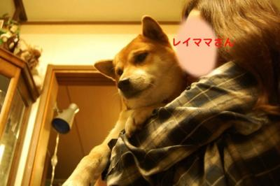 4_20101206194649.jpg