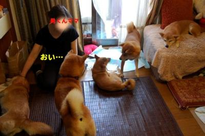 Untitled_20100717235151.jpg