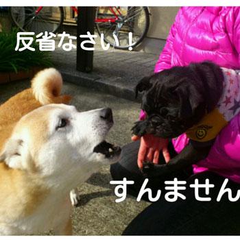 PhotoGrid_1360212745954.jpg